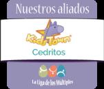 Jardín Infantil  Kids town Cedritos