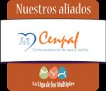 Centro profesional de apoyo familiar